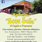 BONU SUILE