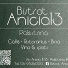 BISTROT ANICIA13