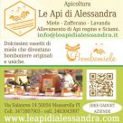 LE API DI ALESSANDRA