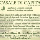 CASALE DI CAPITA di Anna Bilenchi