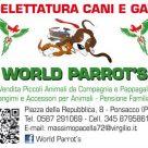 WORLD PARROT'S