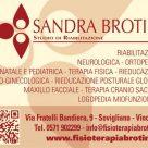 SANDRA BROTINI