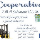 COOPERATIVA F.LLI DI SALVATORE V.L.M.