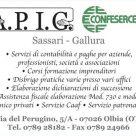 A.P.I.G.