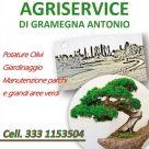 AGRISERVICE