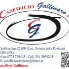 CASEIFICIO GALLINARO