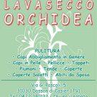 LAVASECCO ORCHIDEA