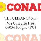 CONAD IL TULIPANO