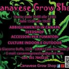 CANAVESE GROW SHOP