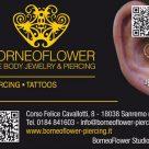 BORNEO FLOWER