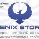 FENIX STORE