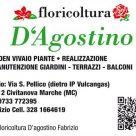 FLORICOLTURA D'AGOSTINO