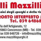 F.LLI MAZZILLI