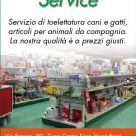 NORVET SERVICE