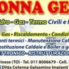 DITTA COLONNA GELSOMINO