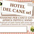 HOTEL DEL CANE