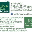 HOTEL AL SELVA