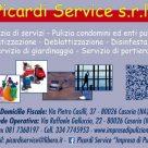 PICARDI SERVICE