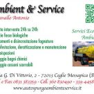 AMBIENT SERVICE