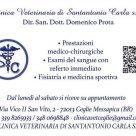 CLINICA VETERINARIA DI SANTANTONIO CARLA