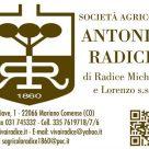 ANTONIO RADICE