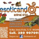 ESOTICANDO ANIMAL SHOP