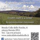AZIENDA AGRITURISTICA - ANTICA FATTORIA DEL COLLE
