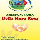 AZIENDA AGRICOLA DELLA MURA ROSA