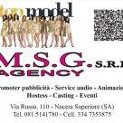 M.S.G. AGENCY