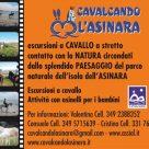 CAVALCANDO L'ASINARA