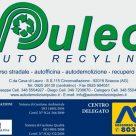 PULEO AUTO RECYLING