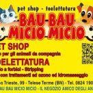 BAU BAU MICIO MICIO