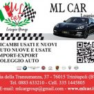 ML CAR LOSAPIO GROUP
