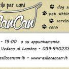 ASILO PER CANI CAN CAN