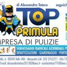TOP PRIMULA
