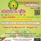 SALAD IS LIFE