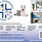 CLINICA VETERINARIA FIRENZE SUD