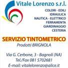 VITALE LORENZO SRL