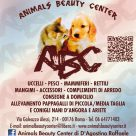 ANIMALS BEAUTY CENTER