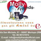 MOLLY FRIENDS