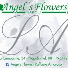 ANGEL'S FLOWERS