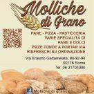 MOLLICHE DI GRANO