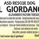 ASD RESCUE DOG IL GIORDANO