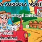 AZIENDA AGRICOLA MONTELIMARI