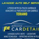 FC PROFESSIONAL CAR DETAIL