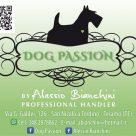 DOG PASSION