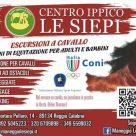 CENTRO IPPICO LE SIEPI