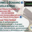 BONSAI TIME