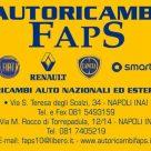 AUTORICAMBI FAPS