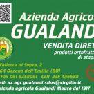 AZIENDA AGRICOLA GUALANDI